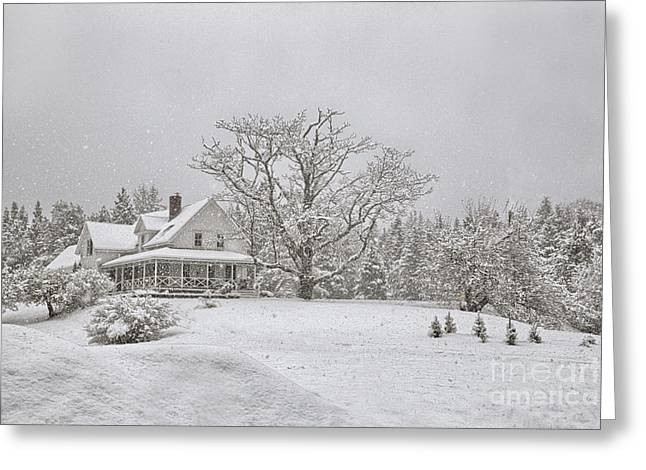 Maine Farmhouse Greeting Cards - November Snow Greeting Card by Susan Garver