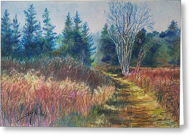 Maine Landscape Drawings Greeting Cards - Novembers Beauty Greeting Card by Joy Nichols