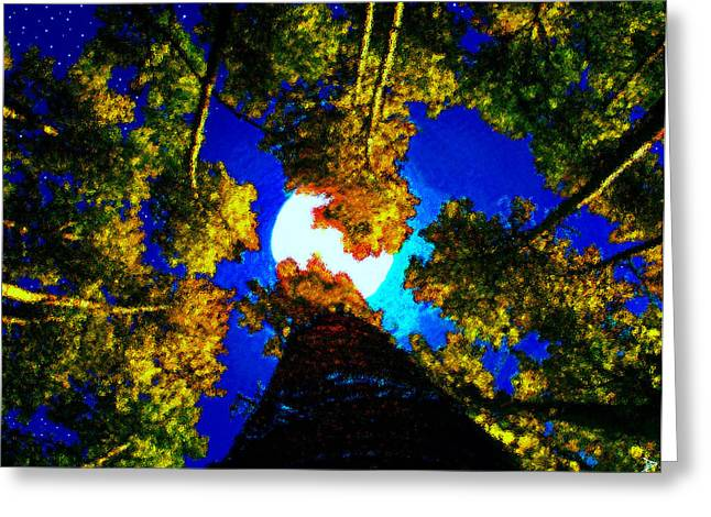 Stary Greeting Cards - Novembers Moon Greeting Card by David Lee Thompson