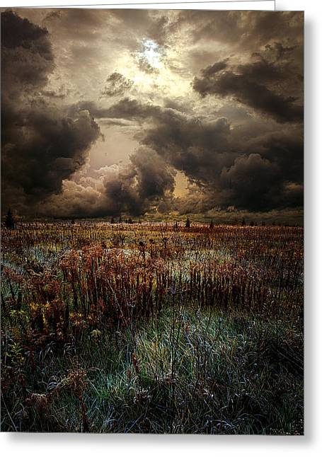 Autumn Photographs Greeting Cards - Nowhere Land Greeting Card by Phil Koch