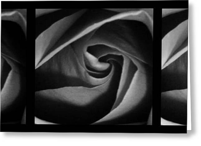 Rose Petals Greeting Cards - Nuances 1 Greeting Card by Andrea Anderegg