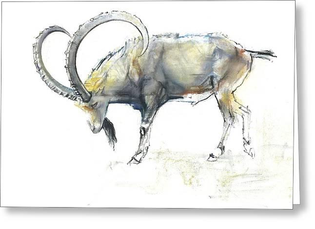Nubian Ibex Greeting Card by Mark Adlington