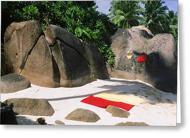 Beach Towel Greeting Cards - Nudist Corner Written On A Rock Greeting Card by Panoramic Images