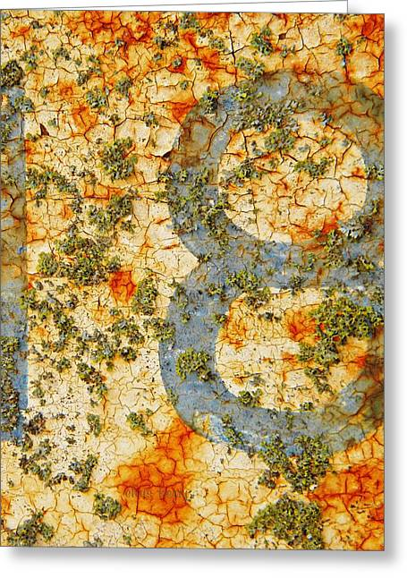 Paint Photograph Greeting Cards - Number 18 with Lichens Greeting Card by Chris Berry