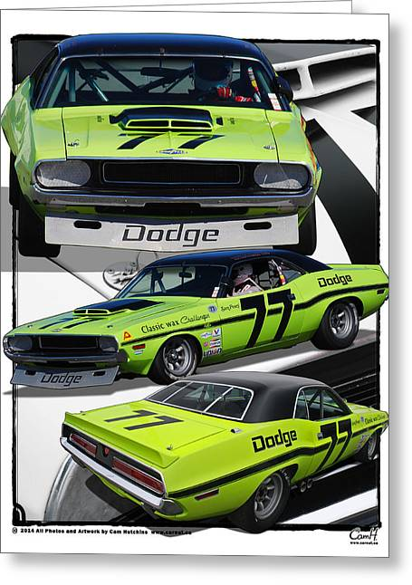 Racecar Number Greeting Cards - Number 77 Dodge Challenger Trans Am Racecar Greeting Card by Cam Hutchins