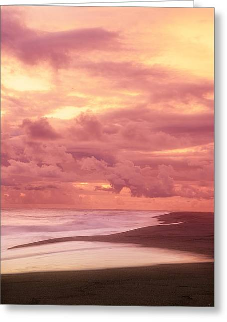 China Beach Greeting Cards - Nurturing Hues Greeting Card by Lourry Legarde