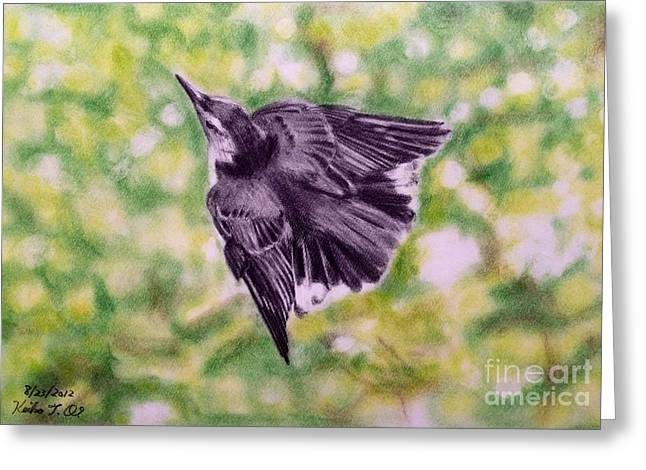 Flying Bird Pastels Greeting Cards - Nuthatch  Greeting Card by Keiko Olds