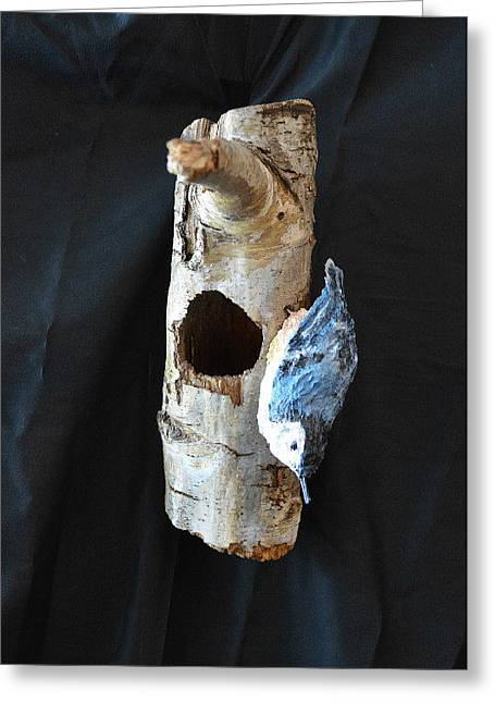Birch Tree Sculptures Greeting Cards - Nuthatch Greeting Card by Renee Erickson