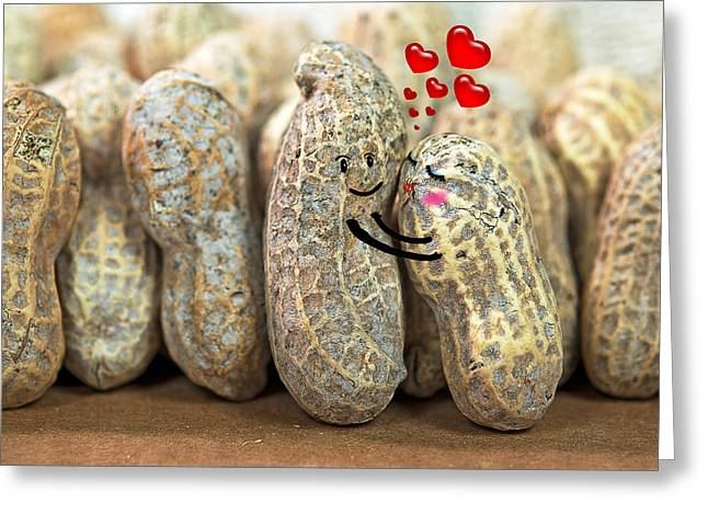 Nuts Mixed Media Greeting Cards - Nuts About You Greeting Card by Maria Dryfhout