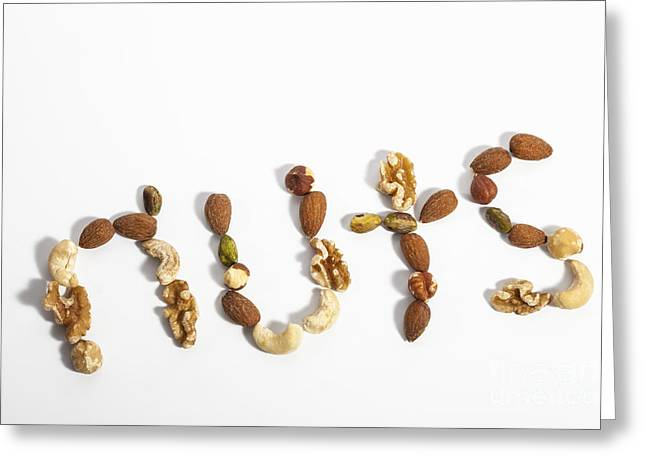 Variety Of Shells Greeting Cards - Nuts Greeting Card by Diane Macdonald
