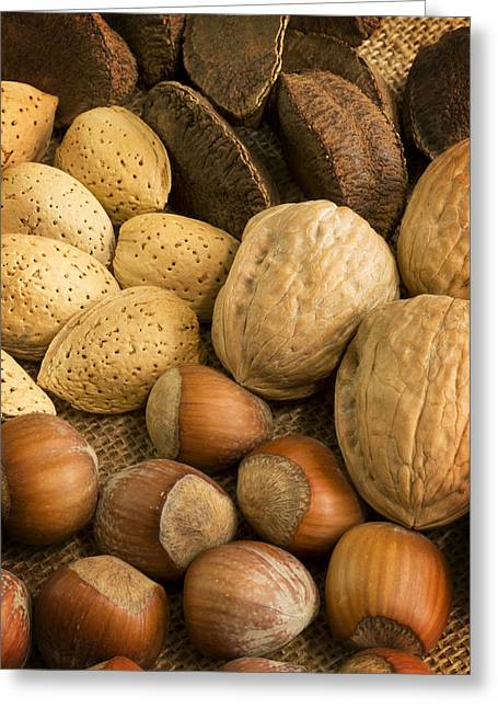 Shell Texture Greeting Cards - Nuts on Burlap Greeting Card by Mark McKinney