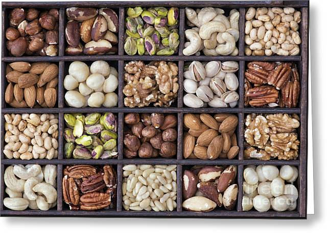 Nuts Greeting Card by Tim Gainey