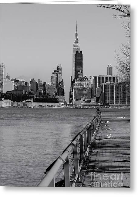 Knicks Greeting Cards - NY from NJ BW Greeting Card by Bob Stone