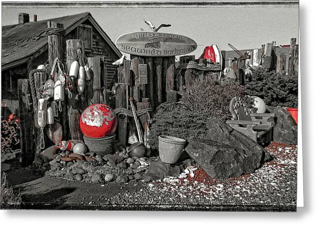 Beach Theme Decorating Greeting Cards - Nye Beach Bums Seaweed Bungalows Greeting Card by Thom Zehrfeld