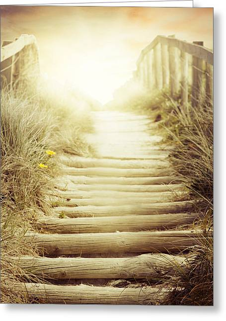 Adventure Photographs Greeting Cards - NZ walkway  Greeting Card by Les Cunliffe
