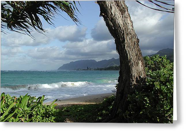 John Stewart Greeting Cards - Oahu Coastline Greeting Card by John Norman Stewart