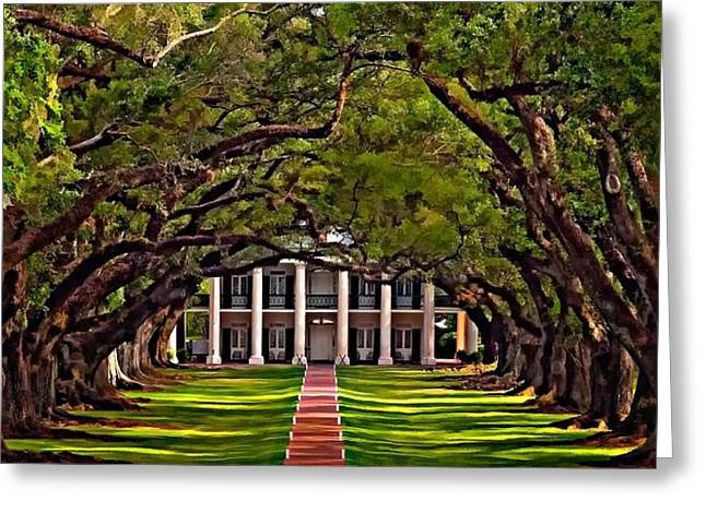 Oak Alley II Greeting Card by Steve Harrington