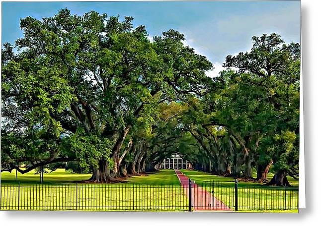 Oak Alley Plantation Greeting Cards - Oak Alley Plantation 2 Greeting Card by Steve Harrington