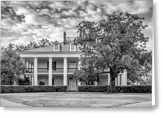 Slaves Greeting Cards - Oak Alley - Rear Entrance bw Greeting Card by Steve Harrington