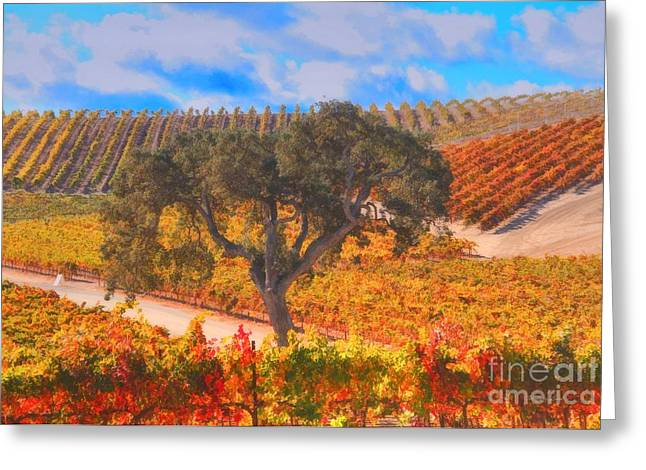 Fall Vineyard Greeting Cards - Oak and Grapes Greeting Card by Stephanie Laird