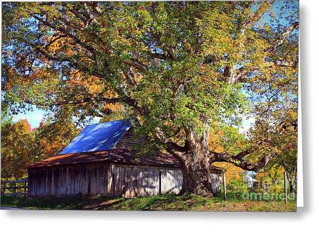 Red Roofed Barn Greeting Cards - Oak Barn and Oak Tree in Autumn Greeting Card by Reid Callaway