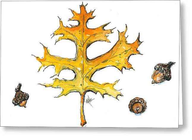 Acorn Greeting Cards - Oak Collection Greeting Card by Christine Camp