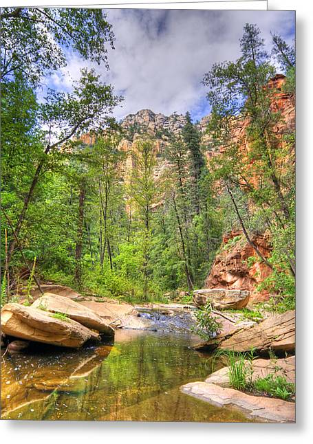 Beautiful Creek Greeting Cards - Oak Creek Greeting Card by Alexey Stiop
