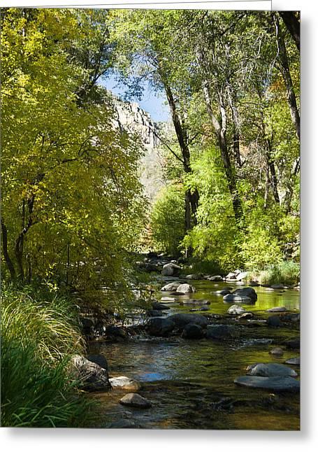 Oak Creek Greeting Cards - Oak Creek Canyon Creek Arizona Greeting Card by Douglas Barnett