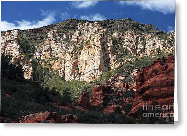 Oak Creek Greeting Cards - Oak Creek Canyon Greeting Card by John Rizzuto