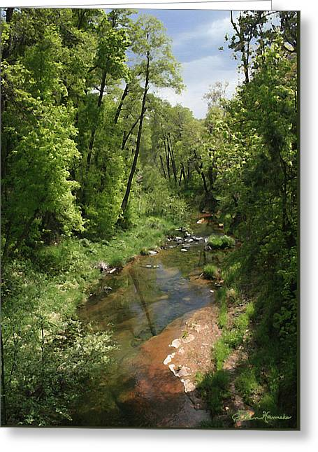 Oak Creek Greeting Cards - Oak Creek Greeting Card by Ellen Henneke
