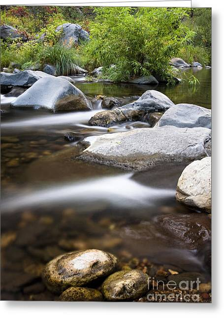 Oak Creek Greeting Cards - Oak creek flowing Greeting Card by Bryan Keil