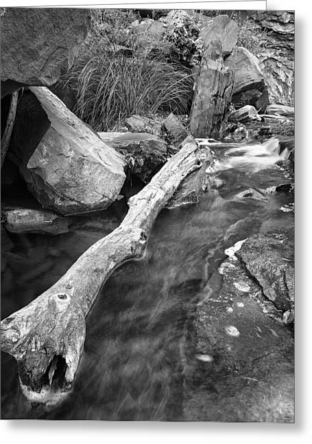 West Fork Greeting Cards - Oak Creek Texture Greeting Card by Larry Pollock