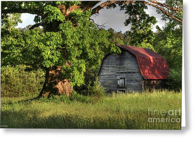Tin Roof Greeting Cards - Oak Framed Barn Greeting Card by Benanne Stiens