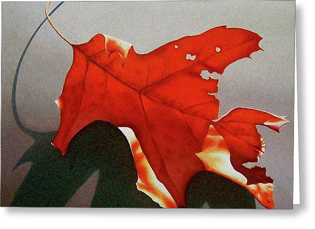 Nature Study Greeting Cards - Oak Leaf 1 Greeting Card by Timothy Jones
