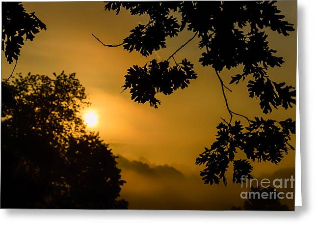 Colorful Cloud Formations Greeting Cards - Oak Leaves Sunrise and Fog Greeting Card by Thomas R Fletcher