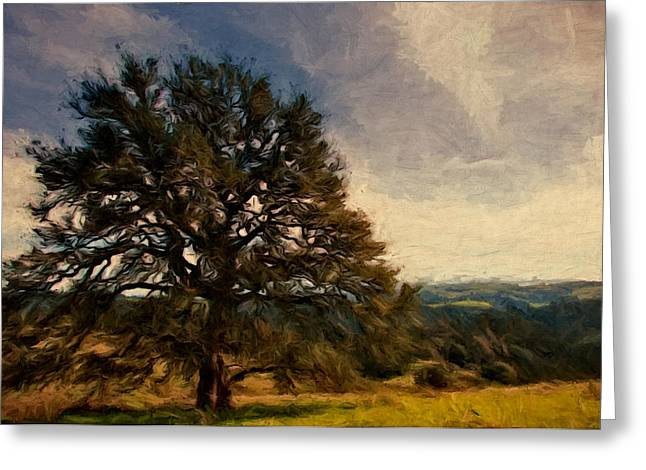 Sonoma County Olives Greeting Cards - Oak Lookout Greeting Card by John K Woodruff
