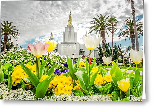 Mormon Temple Photography Greeting Cards - Oakland Temple White Tulips Greeting Card by La Rae  Roberts