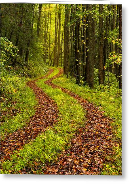 Lighted Pathway Greeting Cards - Obscured Greeting Card by Chad Dutson