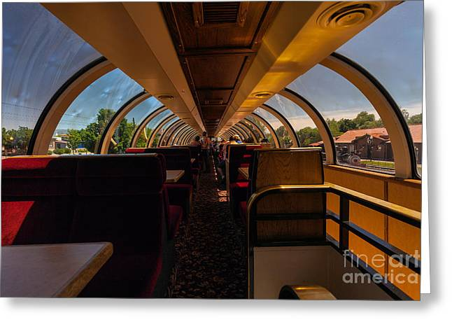 Observation Car Greeting Card by Steven Reed