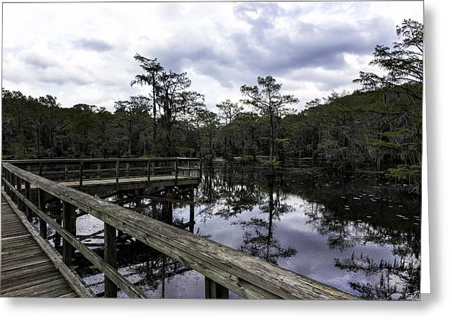 """caddo Lake"" Greeting Cards - Observation Deck Greeting Card by John Hesley"