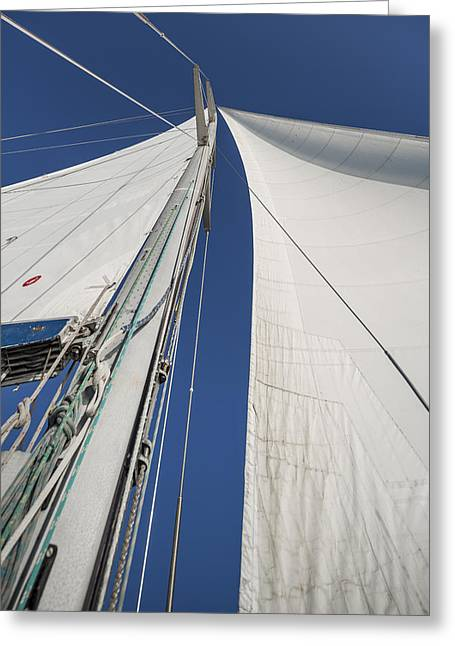 Fun Greeting Cards - Obsession Sails 2 Greeting Card by Scott Campbell