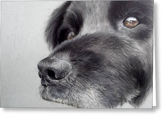 Puppies Pastels Greeting Cards - Occasional Vigilance  Greeting Card by Rebekah Kitzmiller