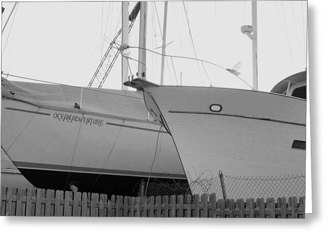 Ocen Landscape Greeting Cards - Ocean Adventure Until Then The Two Are In Dry Dock Monochrome  Greeting Card by Rosemarie E Seppala