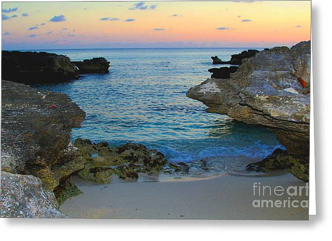 Tropical Oceans Greeting Cards - Ocean Allure Greeting Card by Carey Chen