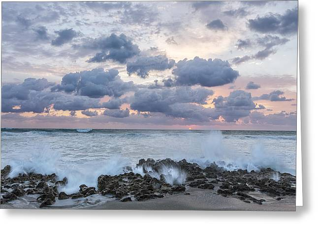 Sand Art Greeting Cards - Ocean Blooms Greeting Card by Jon Glaser