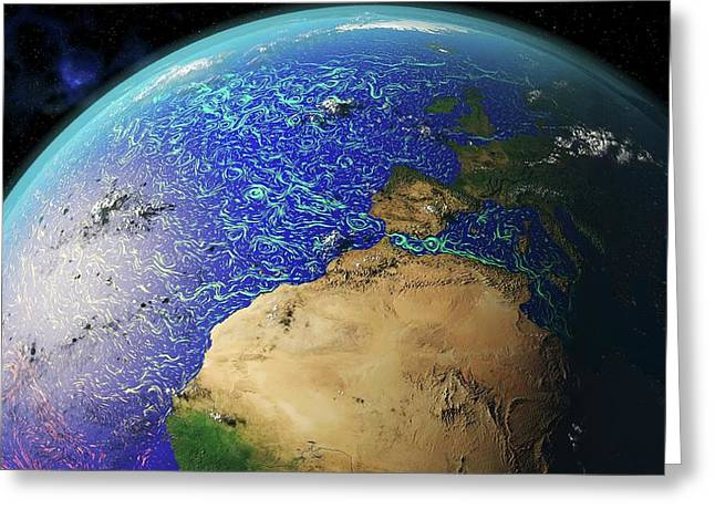 Ocean Currents Off Africa And Europe Greeting Card by Karsten Schneider