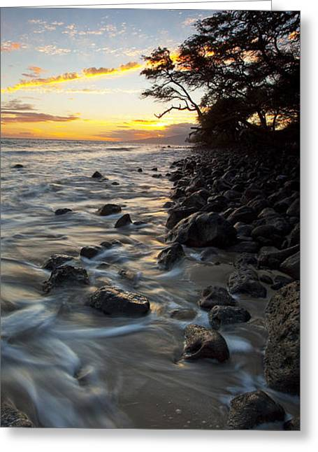 Ocean Flow Greeting Card by James Roemmling