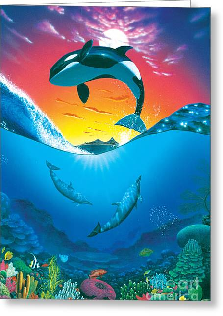 Dolphin Greeting Cards - Ocean Freedom Greeting Card by MGL Studio - Chris Hiett