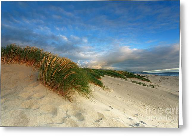 Ocean Front Property Greeting Card by Reflective Moment Photography And Digital Art Images