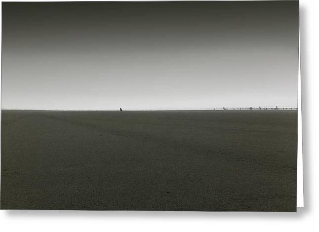 Solitariness Greeting Cards - Ocean Shores Greeting Card by Marcello Cicchini